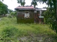 Horticultural land